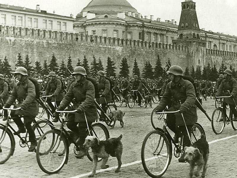 Велосипедные военные собаководы