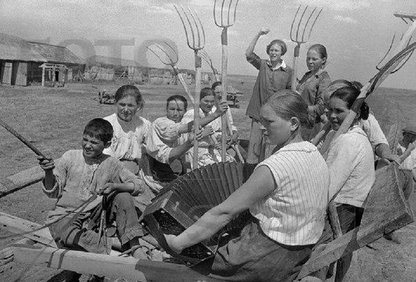 Молодежная сельскохозяйственная бригада