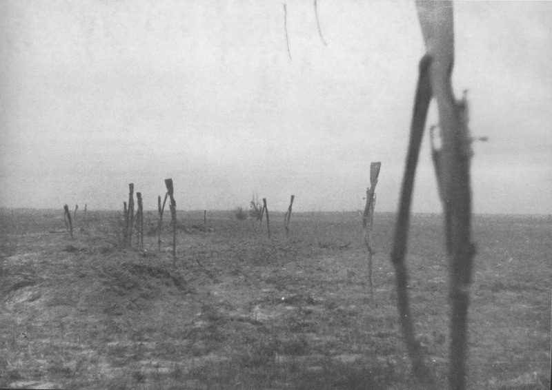 Винтовки сдавшихся в плен советских солдат