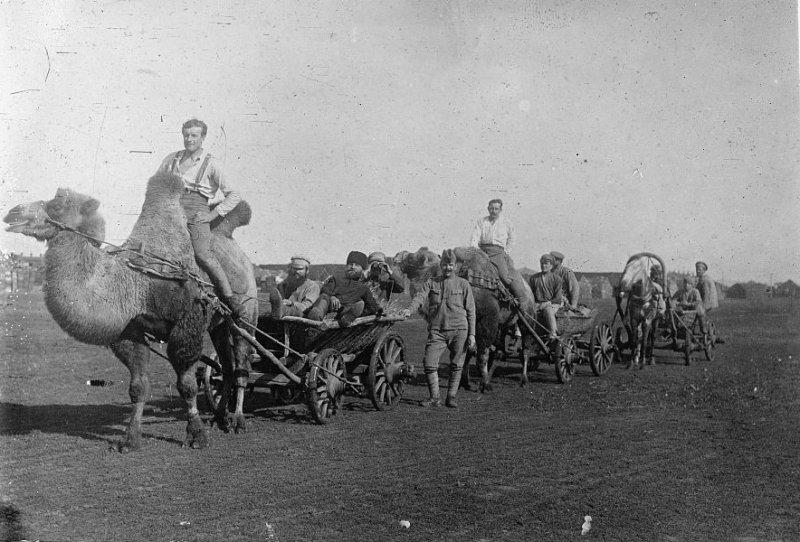 Чехословацкий отряд в низовьях Волги