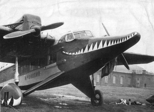 """Агитационный самолет """"Крокодил"""""""