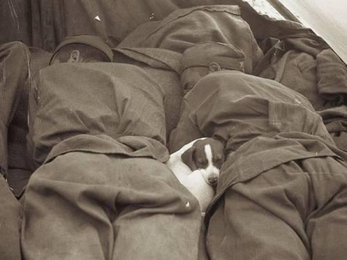 Отдых, Великая Отечественная война